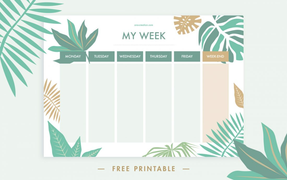 picture relating to Week Planner Printable referred to as Totally free Printable: Tropical Weekly Planner. Begin your 7 days Contemporary!